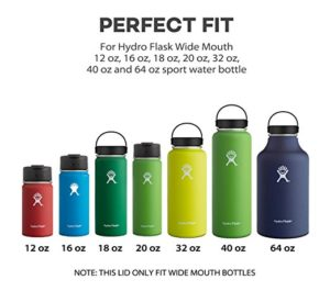 Hydro Flask 18-oz Travel Mug